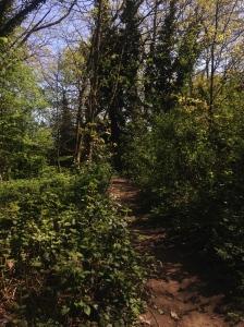 off the beaten path london